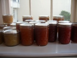 {Preserving Primer} Canning in 4 Steps and My Latest CanningBinge